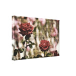 Red Roses Romantic Garden Gallery Wrapped Canvas