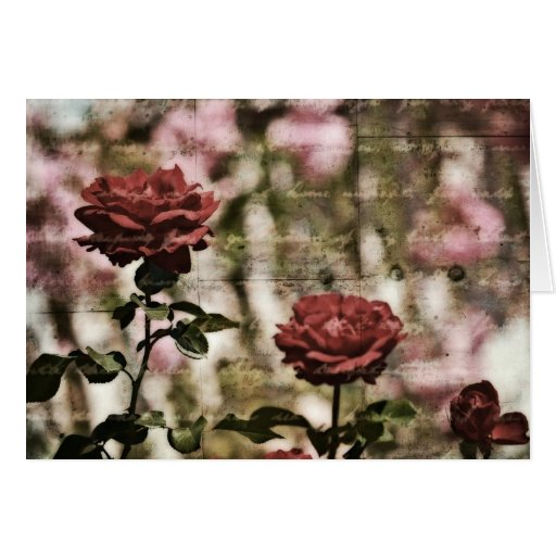 Red Roses Romantic Garden Greeting Cards