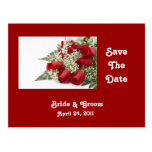 Red Roses Save The Date Postcard