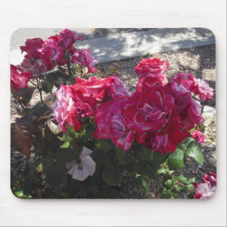 Red Roses Trimmed in White Mouse Pad