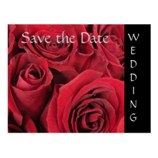 Red Roses Wedding Save the Date Postcard