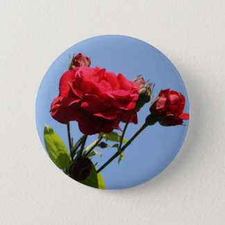 Red Roses with Blue Sky Background Button