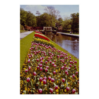 Red Roundhay Park, Leeds, England flowers Posters