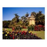 Red Royal Botanical Garden, Sydney, Australia flow Post Cards