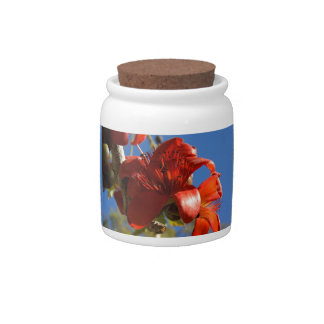 Red Rubber Tree Candy Jar