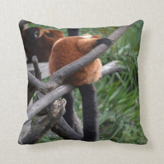 red ruffed lemur c animal on branch back hand throw pillow
