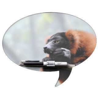 Red Ruffed Lemur Dry Erase Board