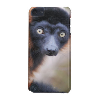 Red Ruffed Lemur iPod Touch Case