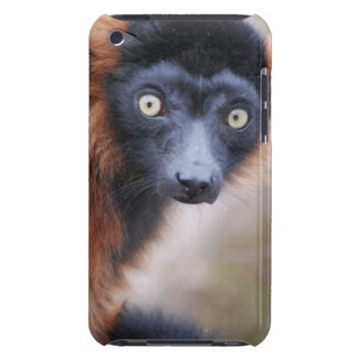 Red Ruffed Lemur iPod Touch Speck Case