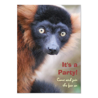 Red Ruffed Lemur Party Invitation