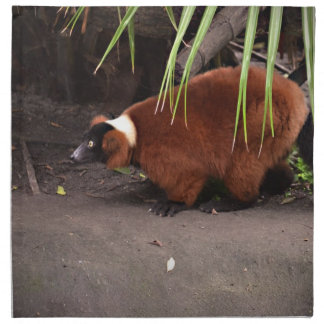 red ruffed lemur walking left w frond  animal cloth napkin