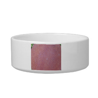 Red Rust Texture Pet Water Bowl