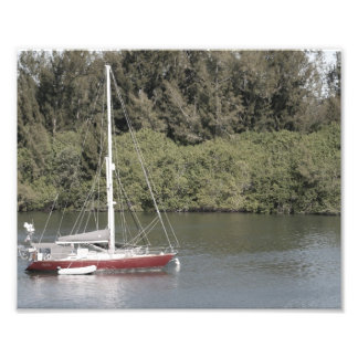 Red Sailboat on River Trees Behind Photograph