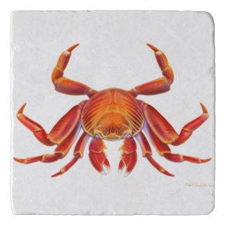 Red Sally Lightfoot Crab Stone Trivet