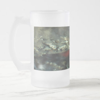 Red Salmon #01 Frosted Glass Beer Mug