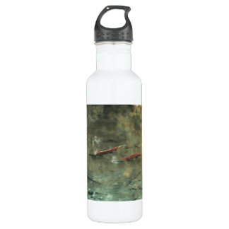 Red Salmon 02 Stainless Steel Water Bottle