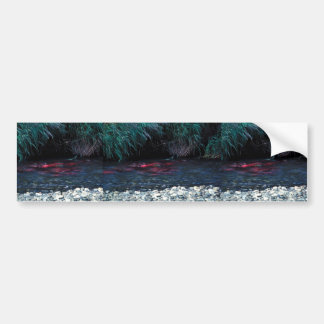 Red Salmon or Sockeye Salmon in Spawning Bed Bumper Stickers