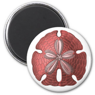 Red Sand Dollar Magnet