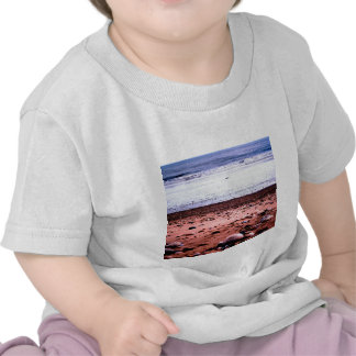 Red Sandy Martian Landscape T-shirt