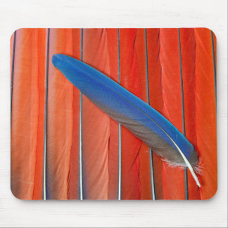Red Scarlet Macaw Feather Still Life Mouse Pad