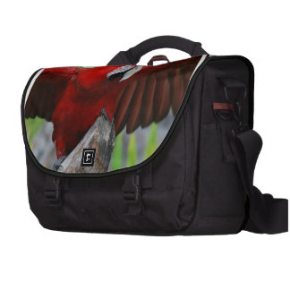 Red Scarlet Macaw Computer Bag