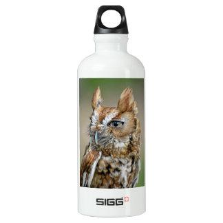 Red Screech Owl Aluminum Water Bottle