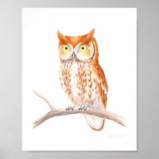 Red Screech Owl Fine Art Print