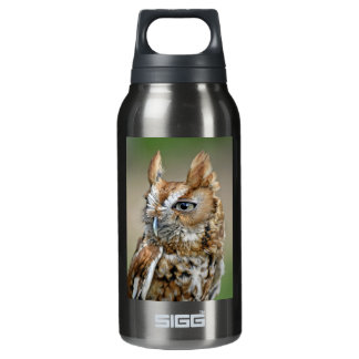 Red Screech Owl Insulated Water Bottle