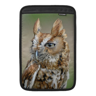 Red Screech Owl MacBook Air Sleeve