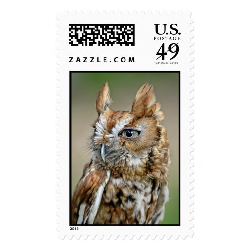 Red Screech Owl Postage