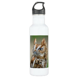 Red Screech Owl Stainless Steel Water Bottle