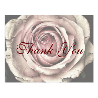 Red Script type & Rustic Pink Rose Thank You Card