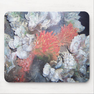 Red Sea Anome Mouse Pad