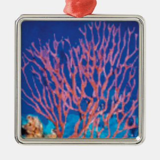 red sea branches metal ornament