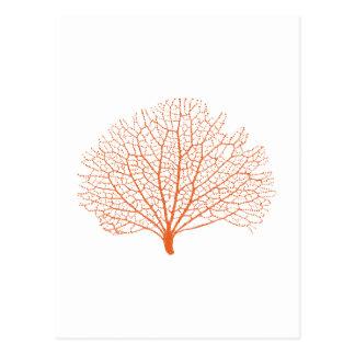 red sea fan coral silhouette postcard