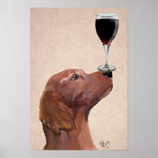 Red Setter Dog Au Vin Poster