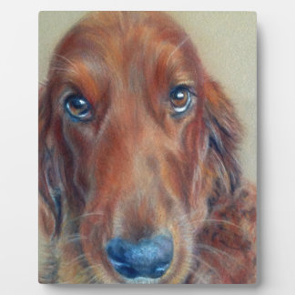 Red setter dog plaque