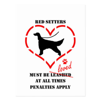 Red Setters Must Be Loved Postcard