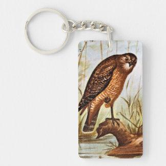 Red Shouldered Hawk art Keychain