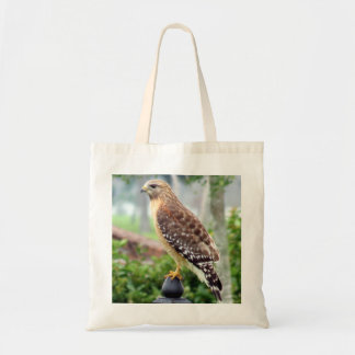 Red-Shouldered Hawk Budget Tote Bags