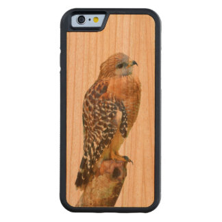 Red-Shouldered Hawk Carved Cherry iPhone 6 Bumper Case