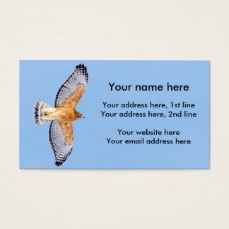 Red Shouldered Hawk in flight Business Card