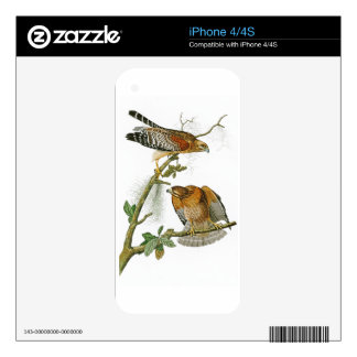 Red-shouldered Hawk John Audubon Birds of America Decal For iPhone 4