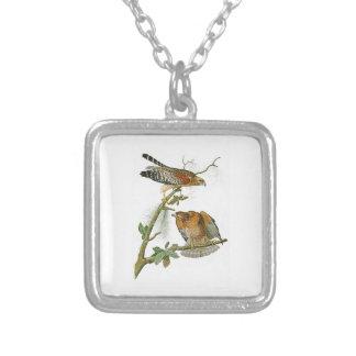 Red-shouldered Hawk John Audubon Birds of America Square Pendant Necklace