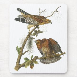 Red-shouldered Hawk, John Audubon Mouse Pad