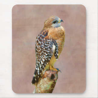 Red-Shouldered Hawk Mouse Pad