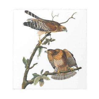 Red-shouldered Hawk Memo Pad