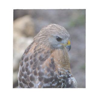 Red Shouldered Hawk Scratch Pads