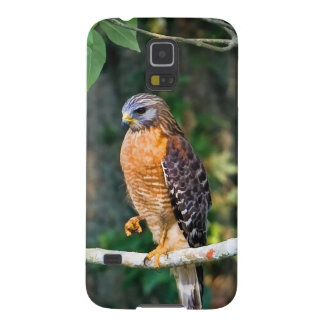 Red-Shouldered Hawk on a Limb Galaxy S5 Covers