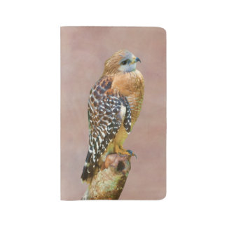 Red-Shouldered Hawk on a Limb Large Moleskine Notebook